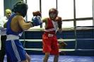 Чемпіонат області з боксу_19