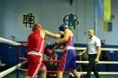 Чемпіонат області з боксу_20