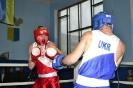 Чемпіонат області з боксу_5